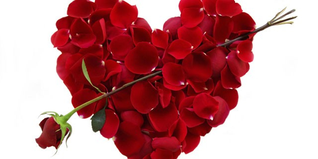Valentine's Day En-Ru — Английские слова на тему День Святого Валентина